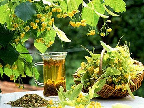 как заварить чай с корицей для похудения
